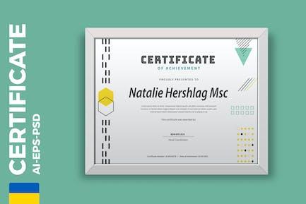 Professional Geometry Certificate / Diploma