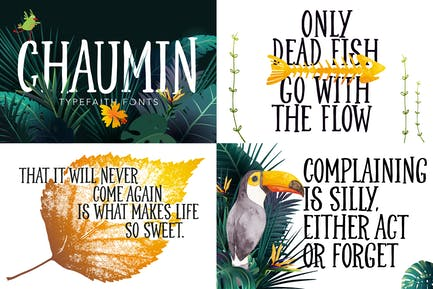 Chaumin Handcrafted Font