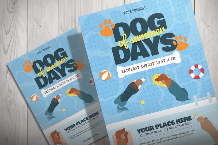 Thumbnail for Dog Swimming in the Pool - Flyer Template