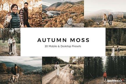 20 Autumn Moss Lightroom Presets & LUTs