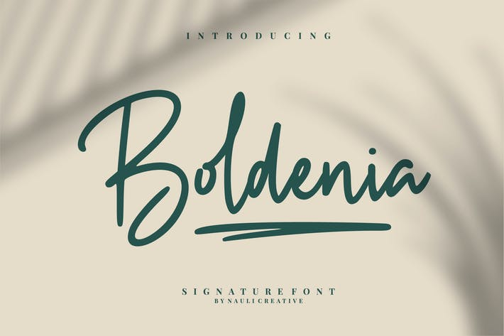 Cover Image For Boldenia - Bold Handwriting Signature Font