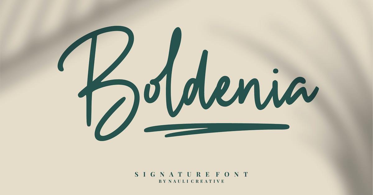 Download Boldenia - Bold Handwriting Signature Font by naulicrea