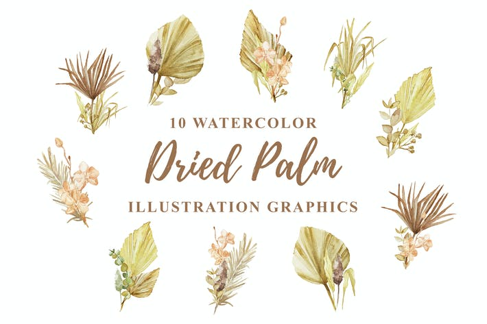 Thumbnail for 10 Watercolor Dried Palm Illustration Graphics