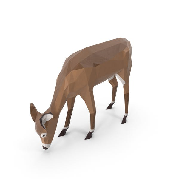 Cover Image for Low Poly Doe