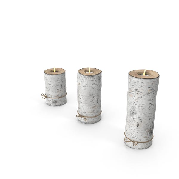 Cover Image for Birch Tree Candle Holder
