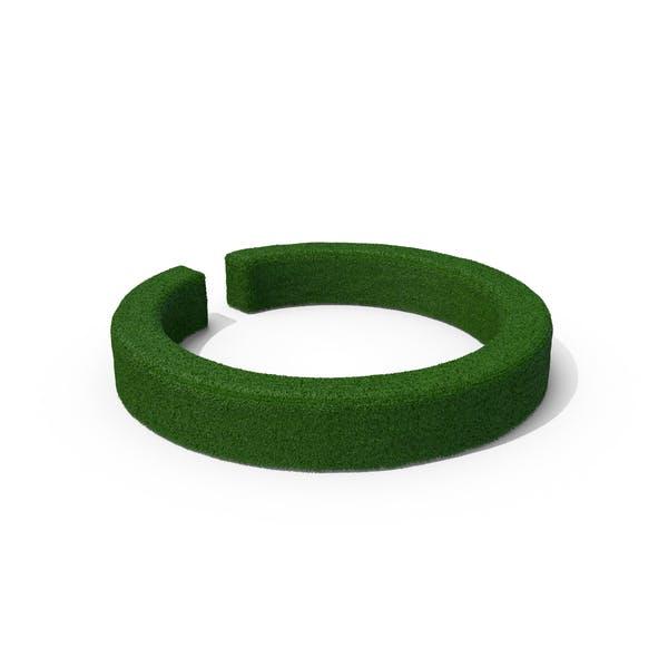 Boxwood Ring