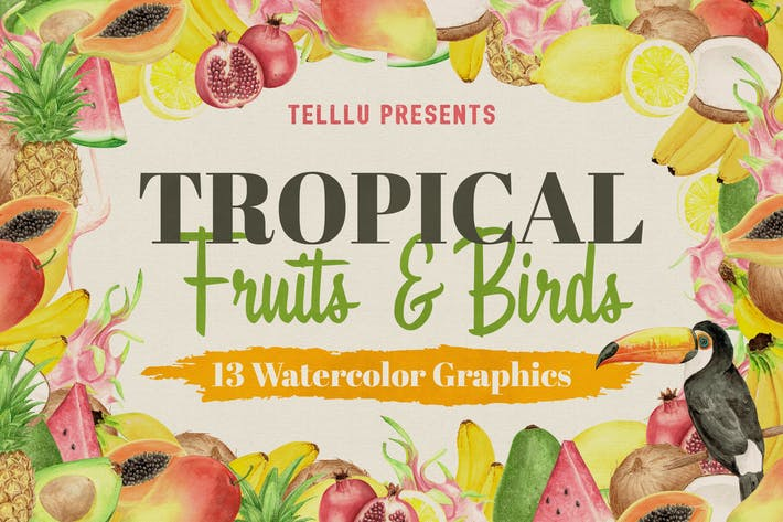 Thumbnail for Aquarelle Collection Tropical 2 : Fruits & Oiseaux
