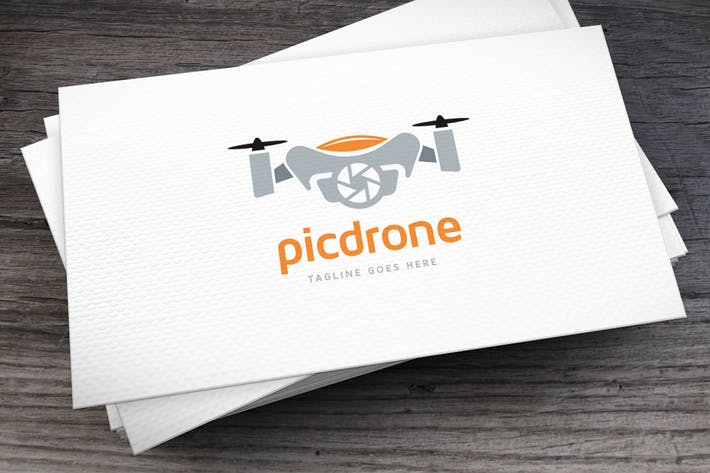 Thumbnail for Picdrone Logo Template