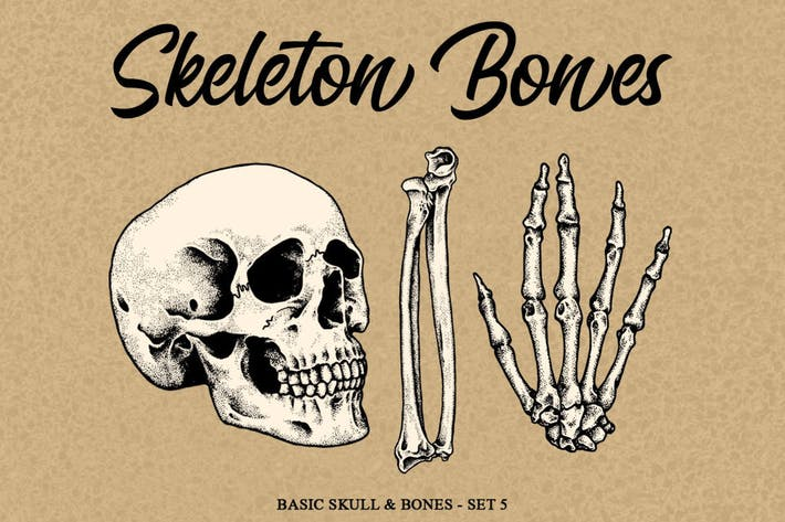 Thumbnail for Skeleton Bones set 5