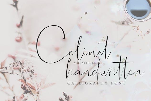 Celinet / Script Font - product preview 15
