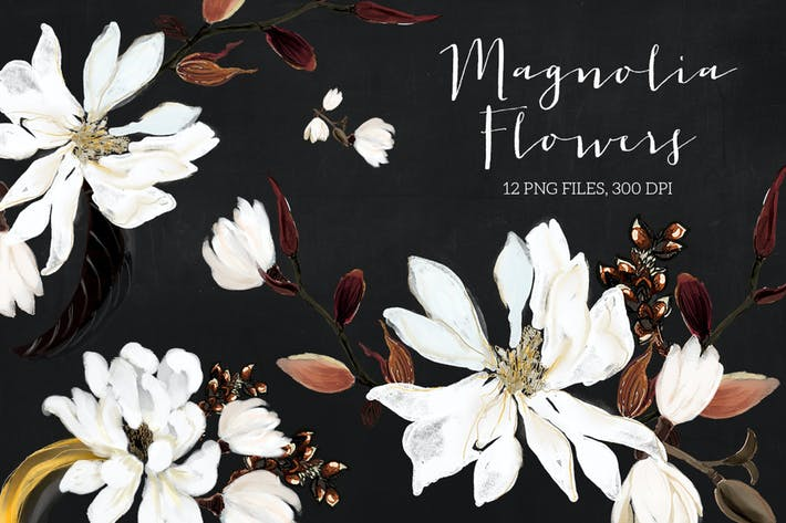 Thumbnail for Magnolia Flowers