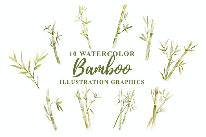Thumbnail for 10 Aquarell Bambus Illustration Grafiken