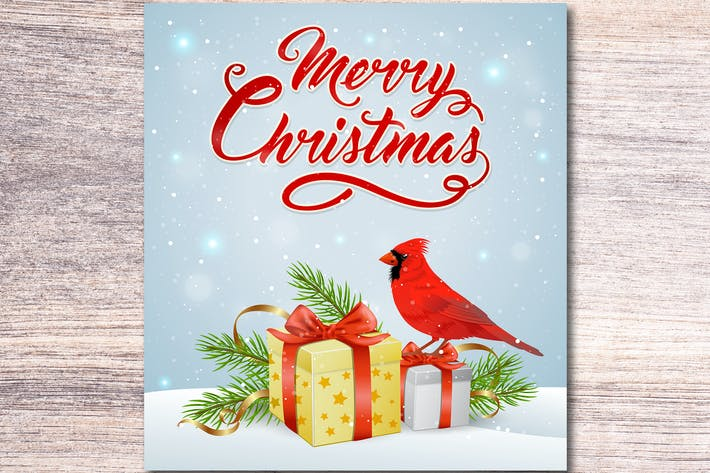 Thumbnail for Christmas Gift and Cardinal Bird