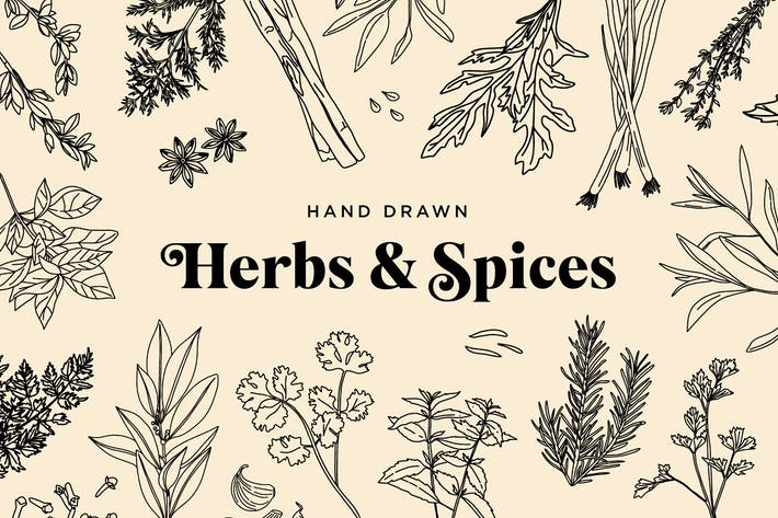 Thumbnail for Hand Drawn Herbs & Spices