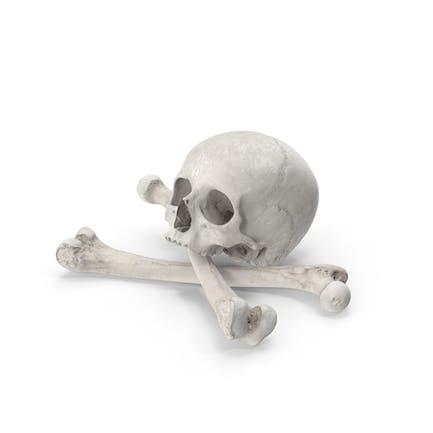 Piraten Schädel und Knochen Zusammensetzung Weiß