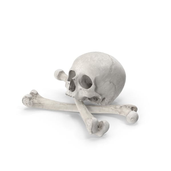 Pirate Skull and Bones Composition White