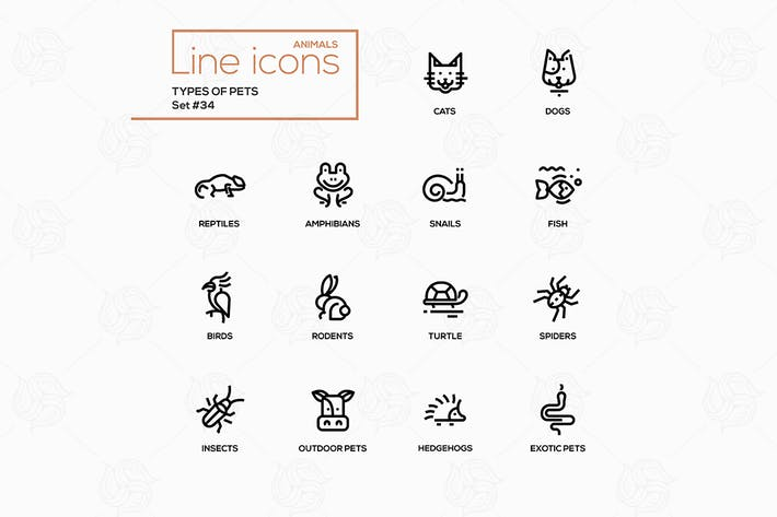 Thumbnail for Types of pets - vector line design style icons set