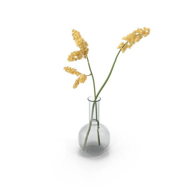 Thumbnail for Yellow Flowers in Vase