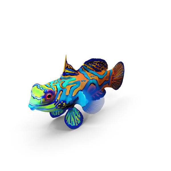 Cover Image for Mandarin Fish
