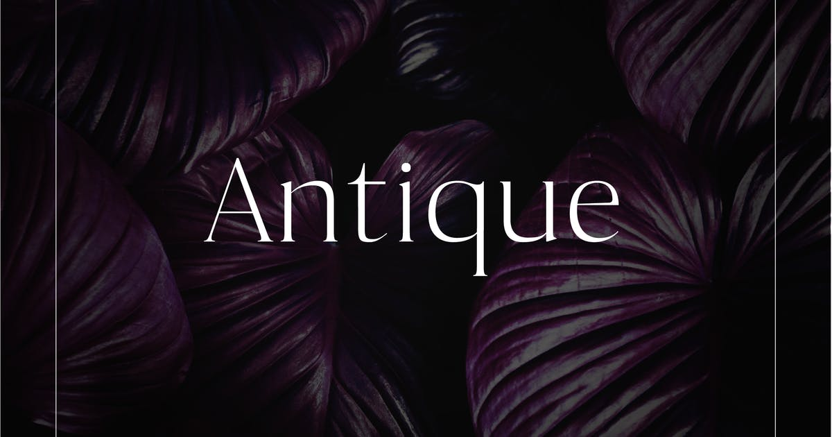 Download Antique - Luxury Serif Typeface by casscappello