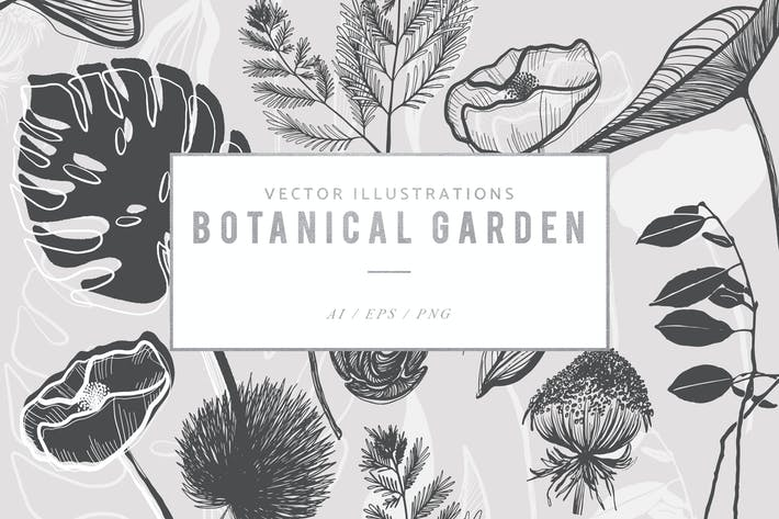 Thumbnail for Botanical Garden Illustrated Graphics
