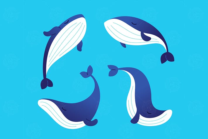 Thumbnail for Whale - modern vector set of flat illustrations.