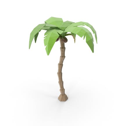 Low Poly Coconut Tree