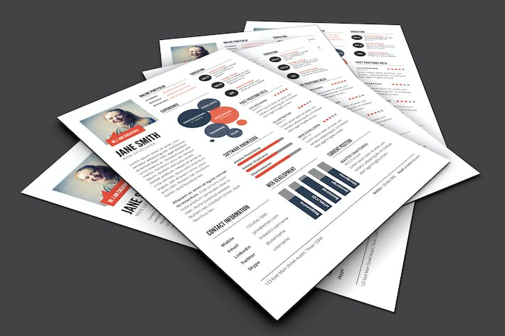 Thumbnail for InfoGraphic Style Resume Template - Ver 2