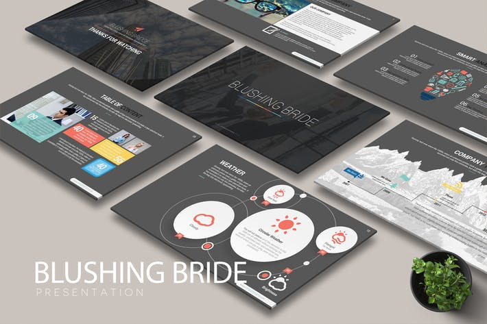 Cover Image For BLUSHING BRIDE Powerpoint