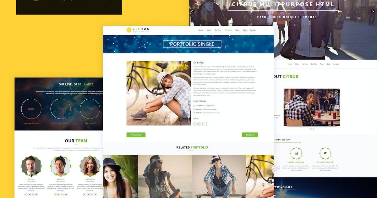 Download Citrus - One Page HTML5 Parallax Portfolio by BuddhaThemes