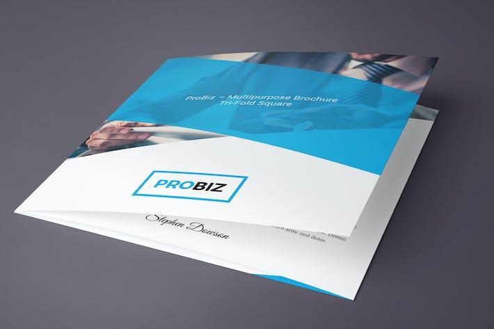 Thumbnail for ProBiz – Brochure Tri-Fold Square