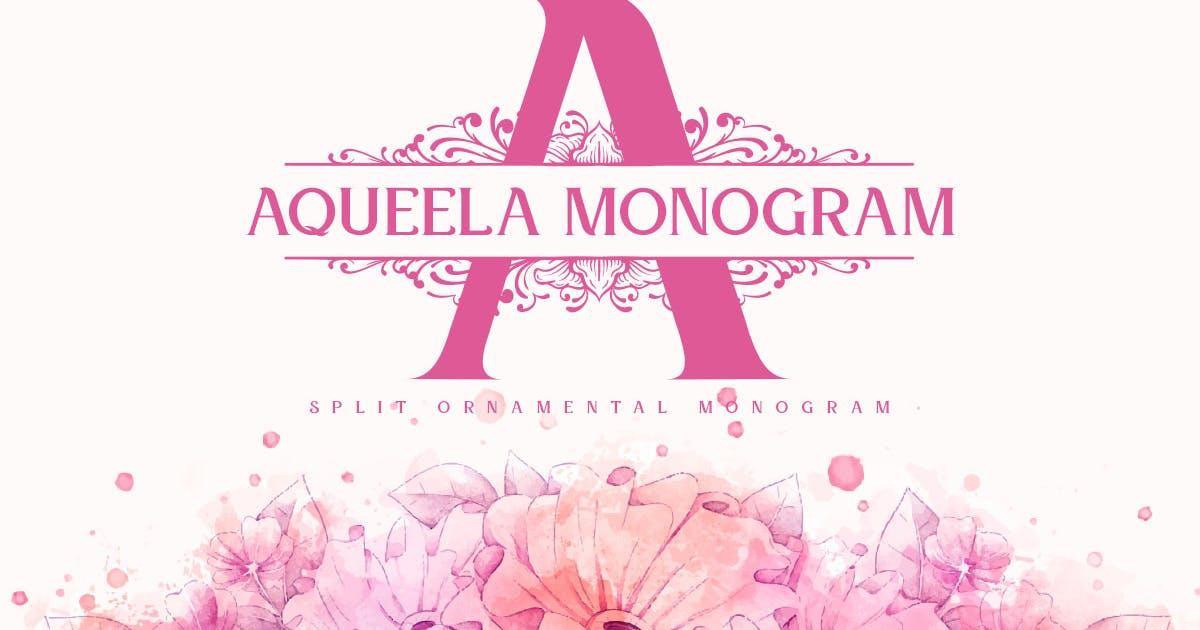 Download Aqueela Split Monogram Font by YumnaStudio