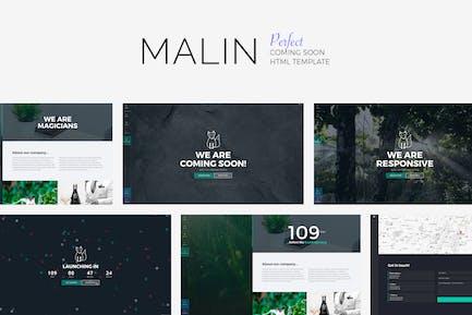 MALIN - Perfect Coming Bald Vorlage