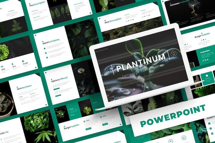 Thumbnail for Plantinum - Powerpoint Template