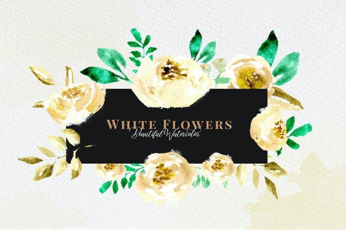 Thumbnail for 40 Pack - White Flower Watercolor