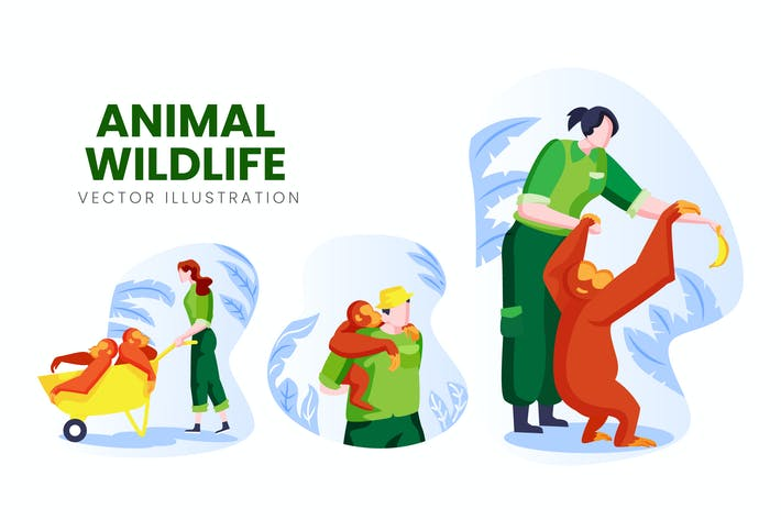 Animal Wildlife Vector Character Set