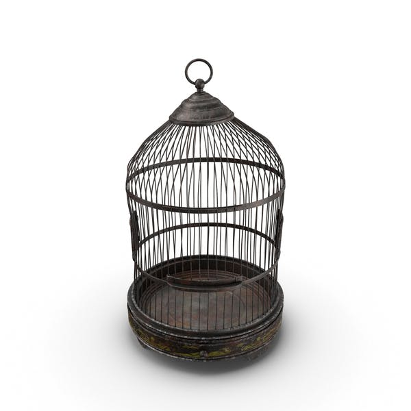 Thumbnail for Old Bird Cage