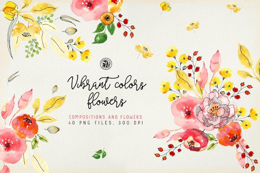 Vibrant Colors Flowers