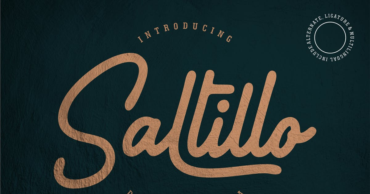 Download Saltillo | Script Font by Vunira