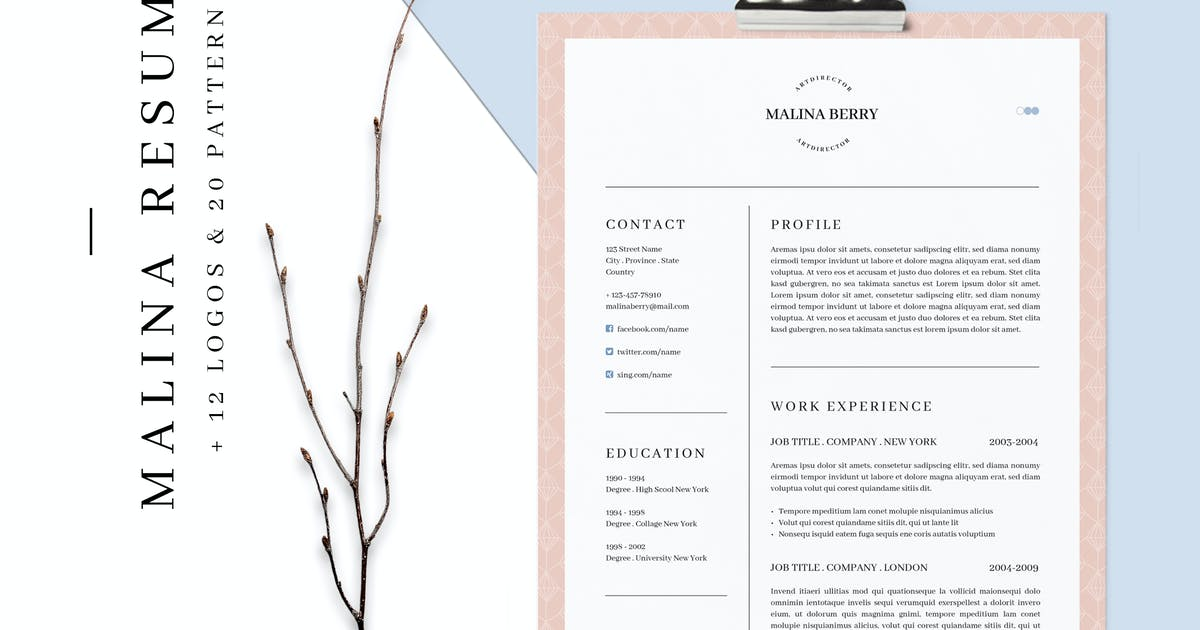 Download MALINA Resume – 3 Pages + Bonus by Unknow