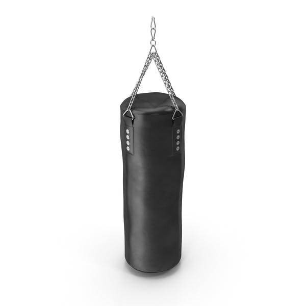 Cover Image for Hanging Punching Bag