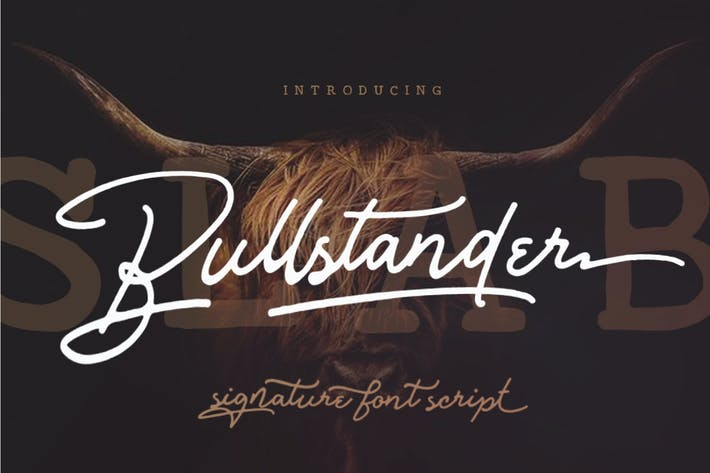 Thumbnail for Bullstander 6 Font Set Signature Monoline