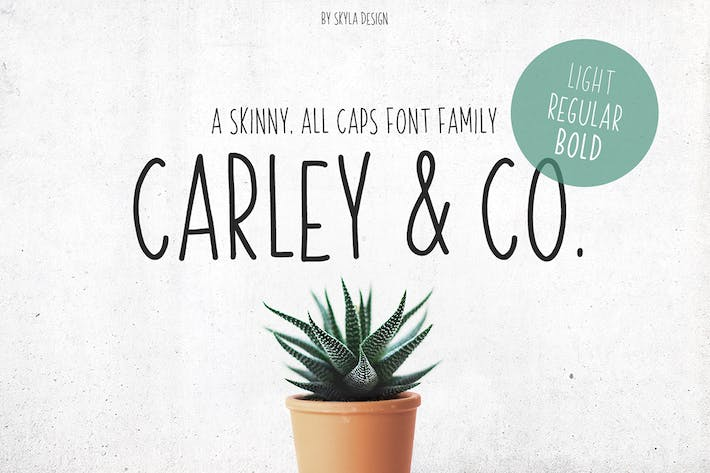 Cover Image For Skinny Font family Carley & Co.
