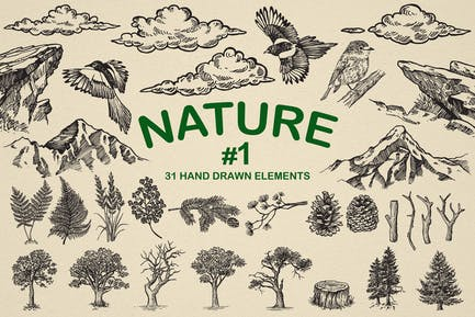 Nature Forest Hand drawn Elements #1