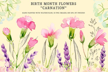 Fleurs du mois de naissance - Oeillet
