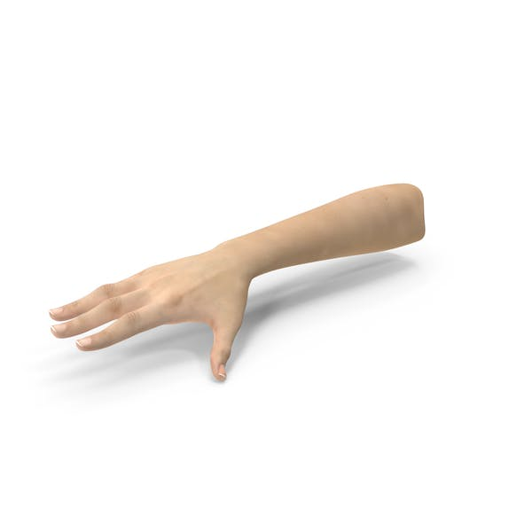 Thumbnail for Caucasian Female Hand