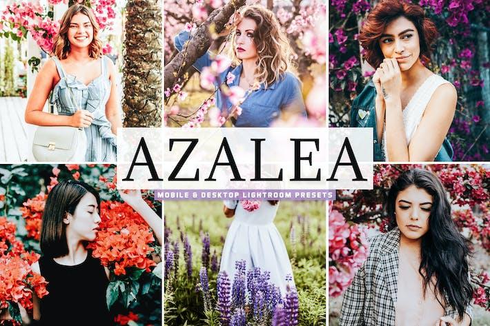 Thumbnail for Azalea Mobile & Desktop Lightroom Presets