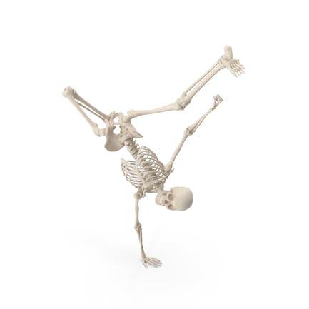 Skeleton Break Dance