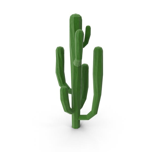 Cover Image for Low Poly Saguaro Cactus