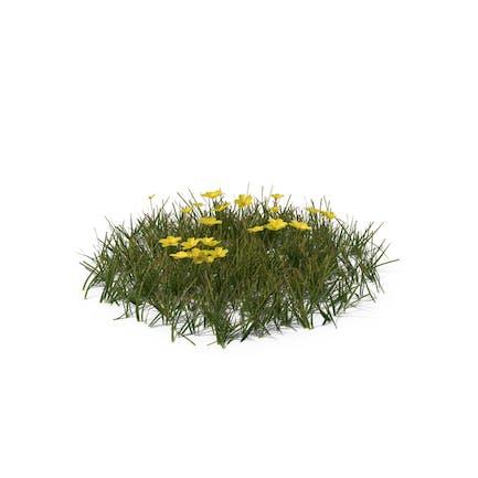 Einfaches Gras mit Blumen (Medium)